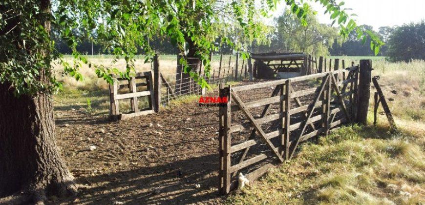 Campo en Comodoro Py